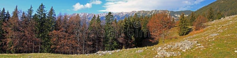 Piatra Craiului山的美好的全景 库存照片