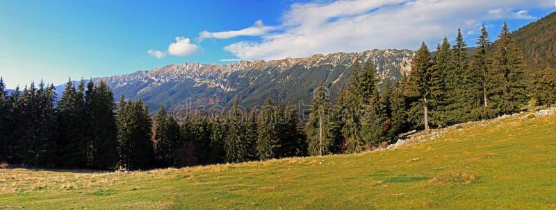 Piatra Craiului山的美好的全景 免版税库存照片