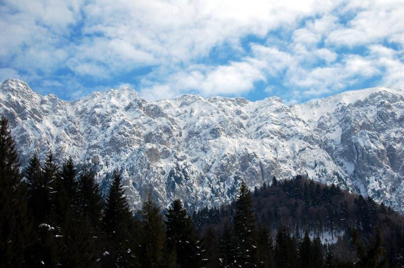Piatra Craiului Gebirgszug im Winter stockfotografie