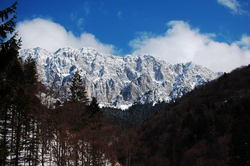 Piatra Craiului, im Winter lizenzfreies stockfoto