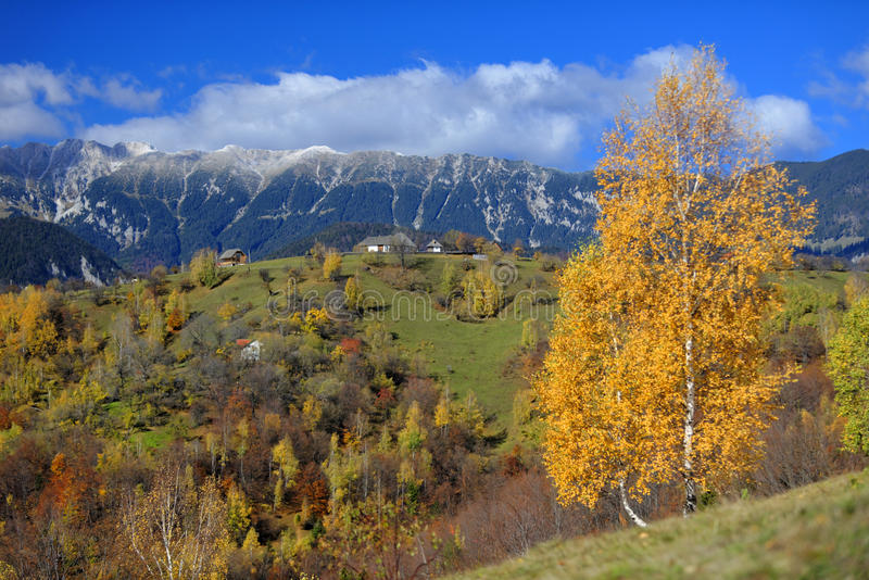Piatra Craiului mountains stock images