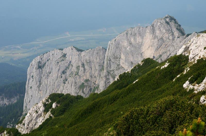 Piatra Craiului Nationalpark, Rumänien stockbilder