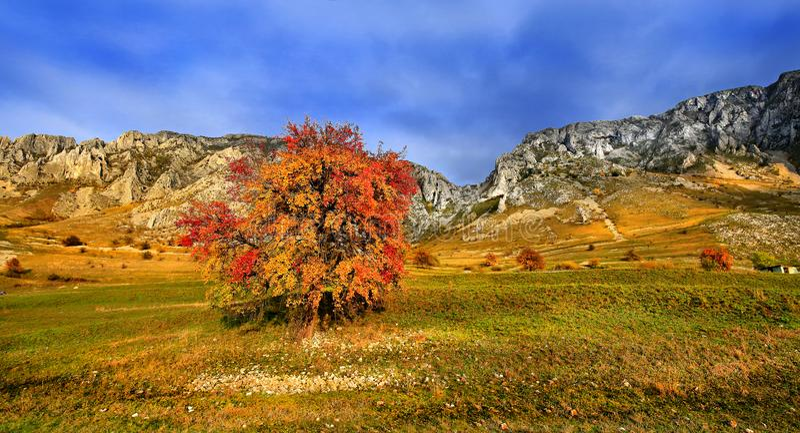 Piatra Secuiului, βουνά Trascau, κομητεία της Alba, Ρουμανία στοκ εικόνες με δικαίωμα ελεύθερης χρήσης