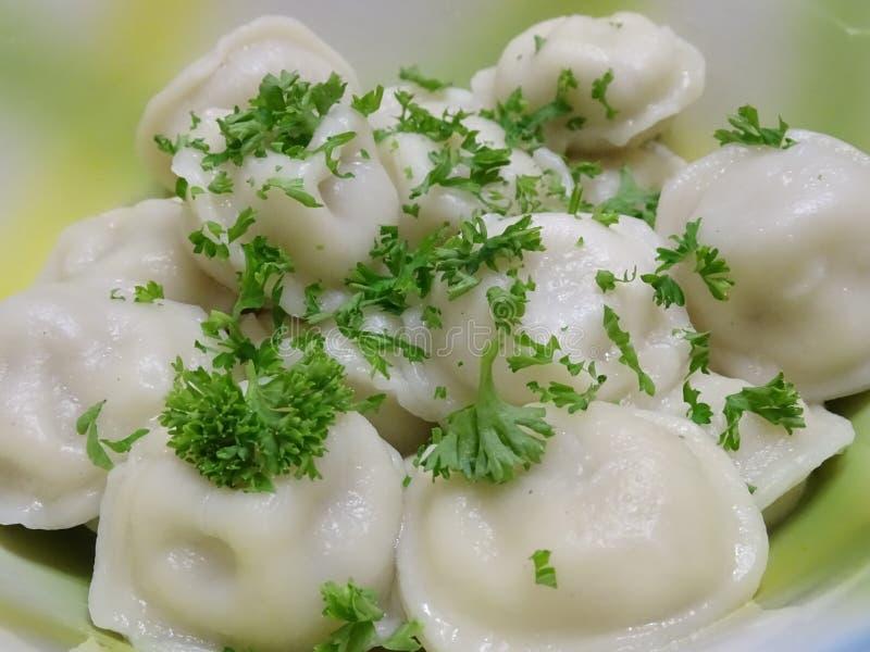 Piatto appetitoso - ha bollito gli gnocchi con carne spruzzata fotografia stock libera da diritti