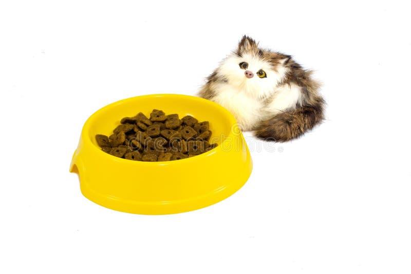 Piatto del gatto con il gattino del giocattolo fotografia stock