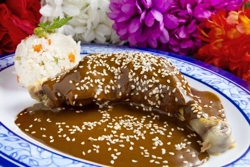 Piatto del Mexican della talpa del pollo fotografia stock