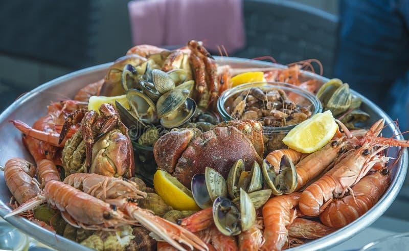 Piatto delizioso dei frutti di mare: granchio, gamberetto, scampi fotografia stock libera da diritti