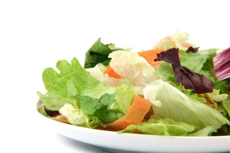 Piatto dell'insalata fotografie stock