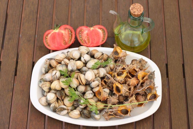Piatto delle lumache di mare e dei cuori edule freschi fotografia stock libera da diritti