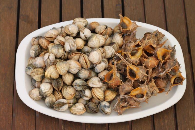 Piatto delle lumache di mare e dei cuori edule freschi immagine stock libera da diritti