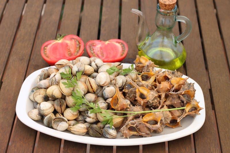 Piatto delle lumache di mare e dei cuori edule freschi immagini stock libere da diritti