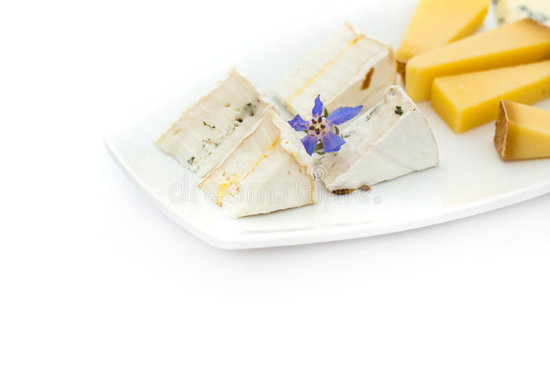 Piatto di formaggio con differenti generi di formaggio con i fiori immagini stock