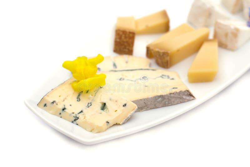 Piatto di formaggio con differenti generi di formaggio con i fiori immagine stock libera da diritti