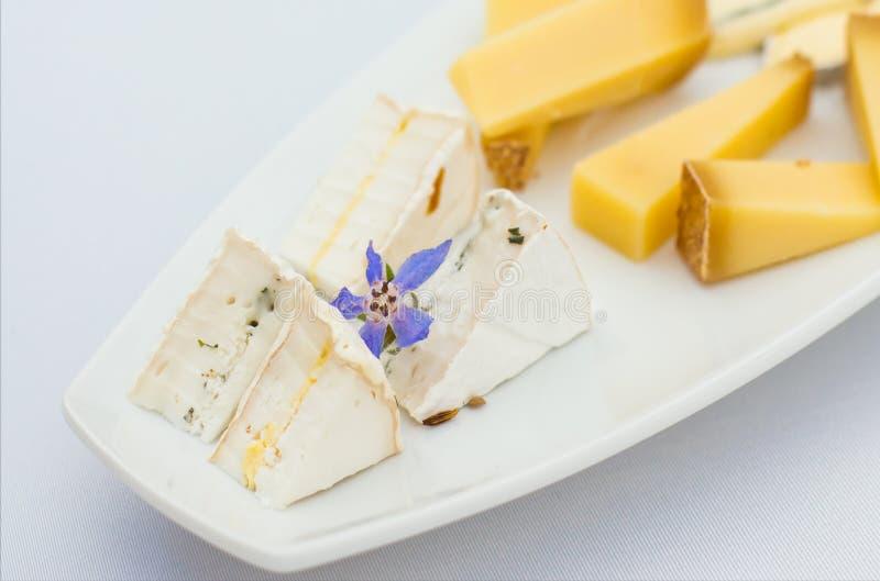 Piatto di formaggio con differenti generi di formaggio con i fiori fotografia stock