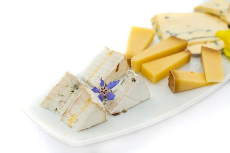 Piatto di formaggio con differenti generi di formaggio con i fiori fotografie stock