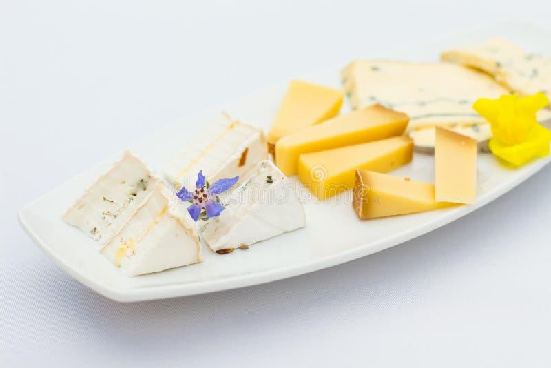 Piatto di formaggio con differenti generi di formaggio con i fiori fotografie stock libere da diritti