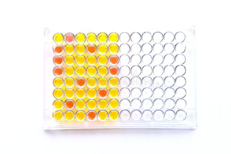 piatto Enzima-collegato di analisi dell'immunosorbente fotografia stock libera da diritti