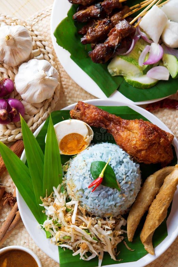 Piatto malese del riso fotografia stock libera da diritti