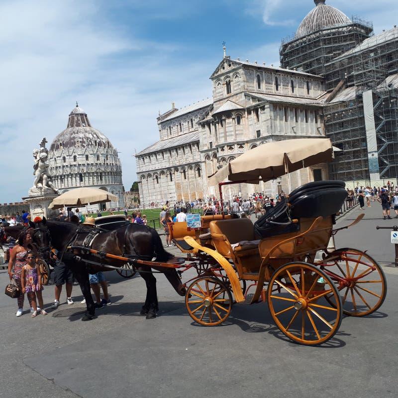 Piazza dei Miracoli, fracht, koń i powozik, tryb transport, rydwan zdjęcie stock
