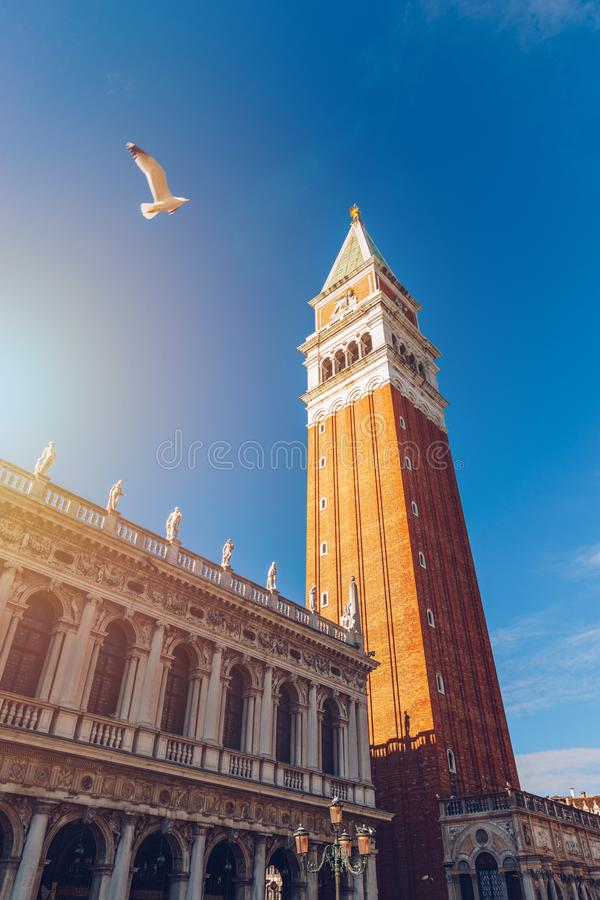 Piazza San Marco with Campanile. Venice, Italy. Campanile di Venezia located at Piazza San Marco, Italy stock image