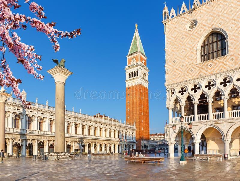Piazza San Marko przy wiosną, Wenecja obraz royalty free