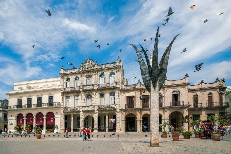 Piazza Vieja in altem Havana, Kuba stockfotografie