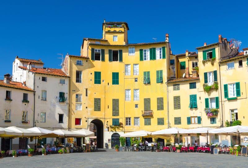 PiazzadellAnfiteatro fyrkant i cirkusgård av den medeltida staden Lucca royaltyfria foton