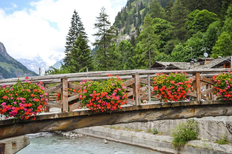 Flowers on the wooden bridge stock photography