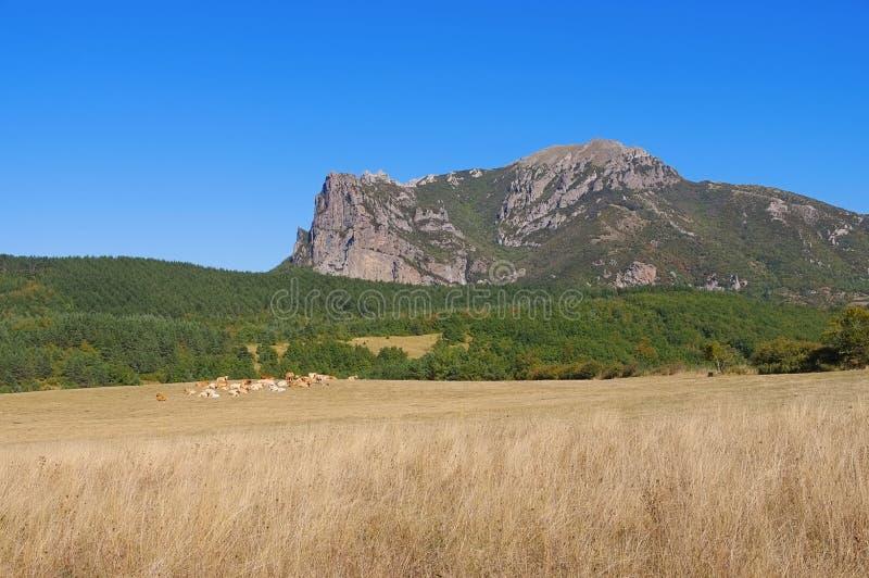 Pic de Bugarach in Süd-Frankreich lizenzfreies stockfoto