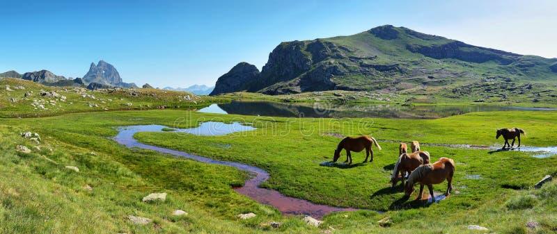 Pic du Midi d Ossau de la meseta de Anayet en español los Pirineos, España fotos de archivo libres de regalías