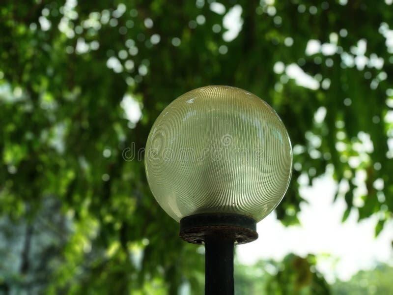 Pic för stående för ljus pol för gata arkivbild