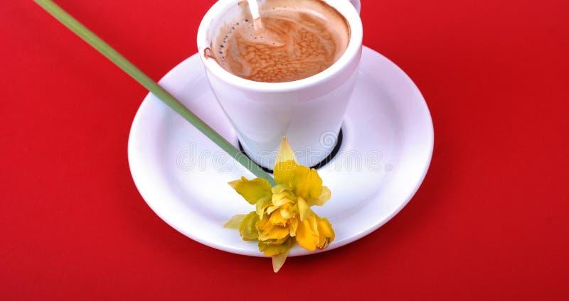 Wiosna ranku cofee z żółtym kwiatem zdjęcia royalty free