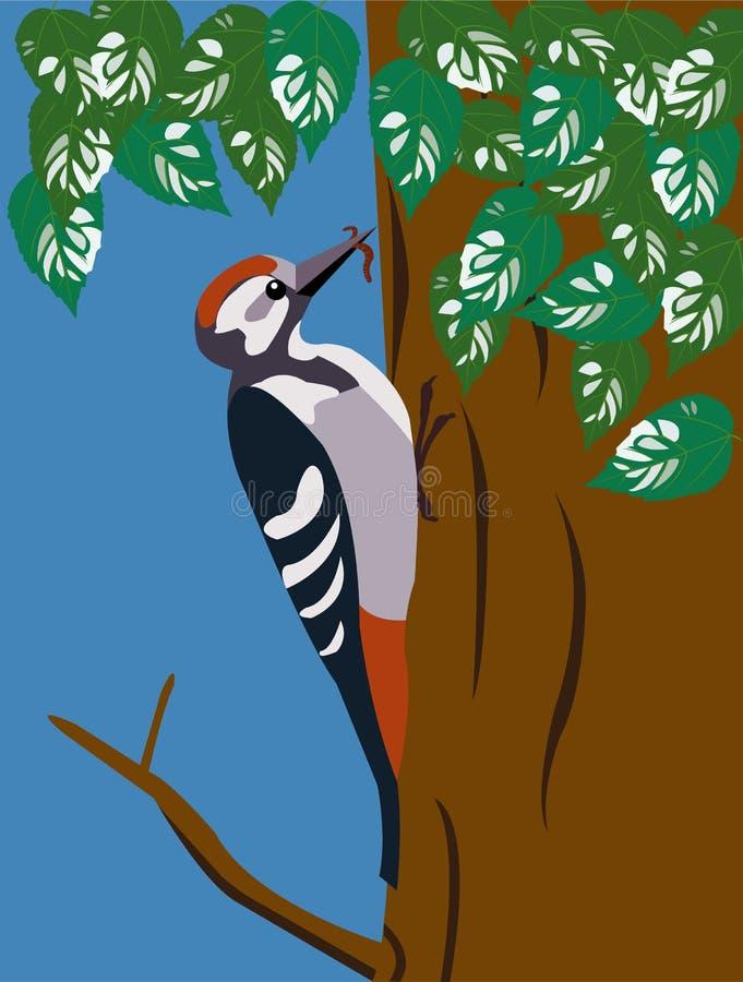 Pica-pau na árvore imagem de stock
