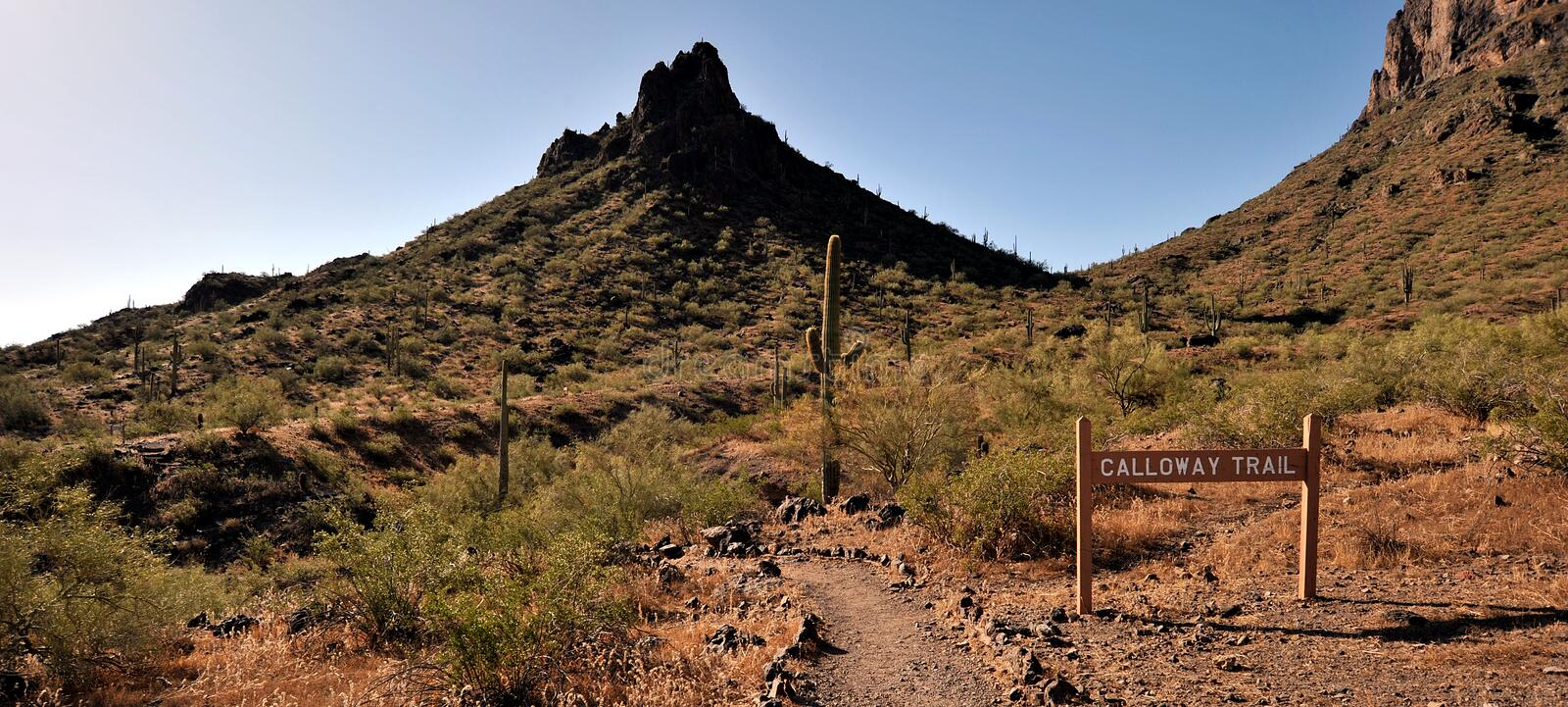 Download At The Picacho Peak Stock Photo - Image: 14703220