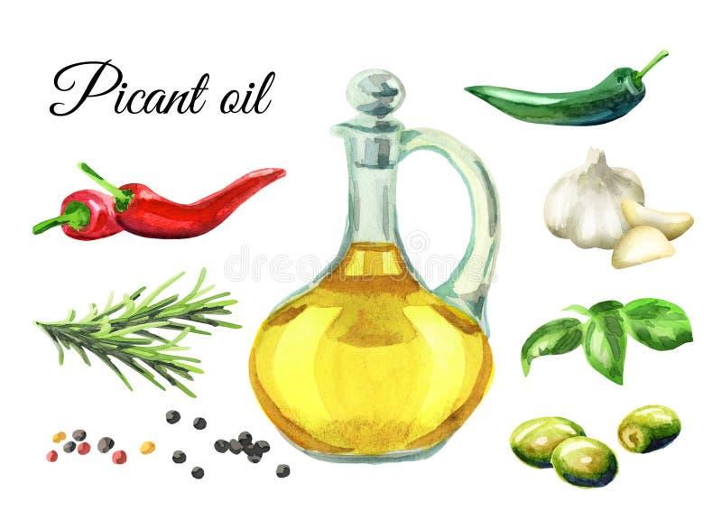 Picant oljauppsättning Hand dragen vattenfärgillustration stock illustrationer