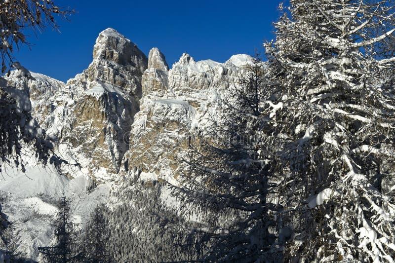 Picchi coperti di neve delle Dolomiti in inverno immagini stock