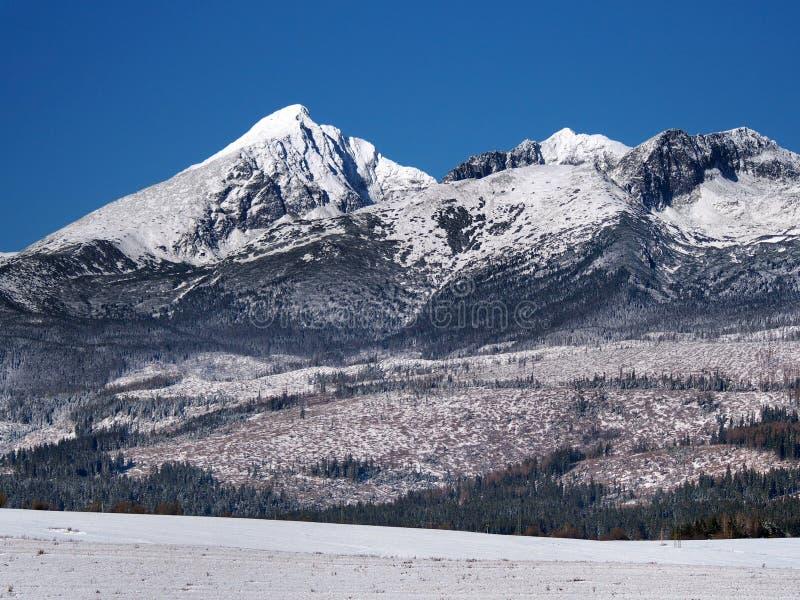 Picchi di Krivan, di Kratka e di Ostra nell'inverno immagini stock