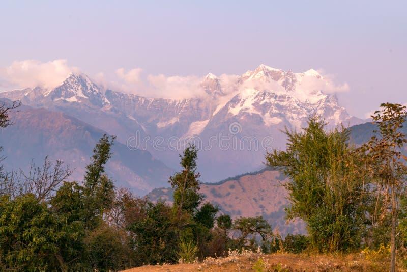 Picchi mistici di Chaukhamba dell'Himalaya di Garhwal durante il tramonto dal campeggio di Deoria Tal fotografia stock