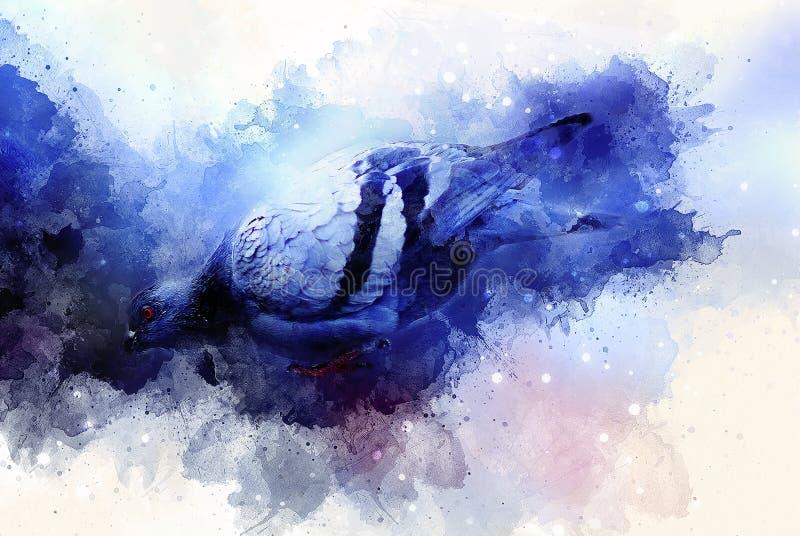 Piccione e fondo morbidamente vago dell'acquerello Priorità bassa blu di colore royalty illustrazione gratis