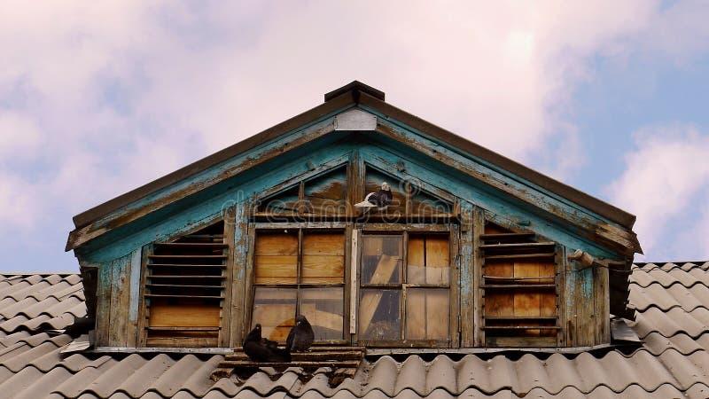 Piccioni vicino all'abbaino di vecchia casa fotografia stock