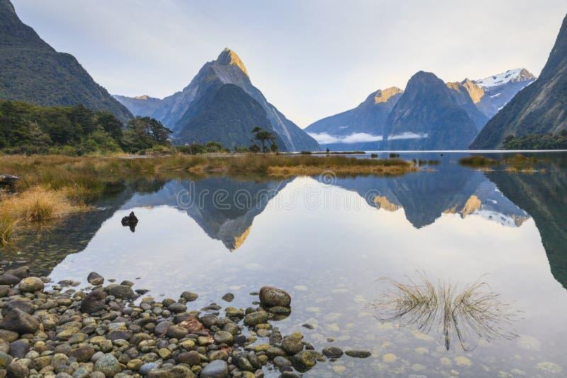 Picco del mitra, Milford Sound, Fiordland, Nuova Zelanda in Morni iniziale fotografia stock
