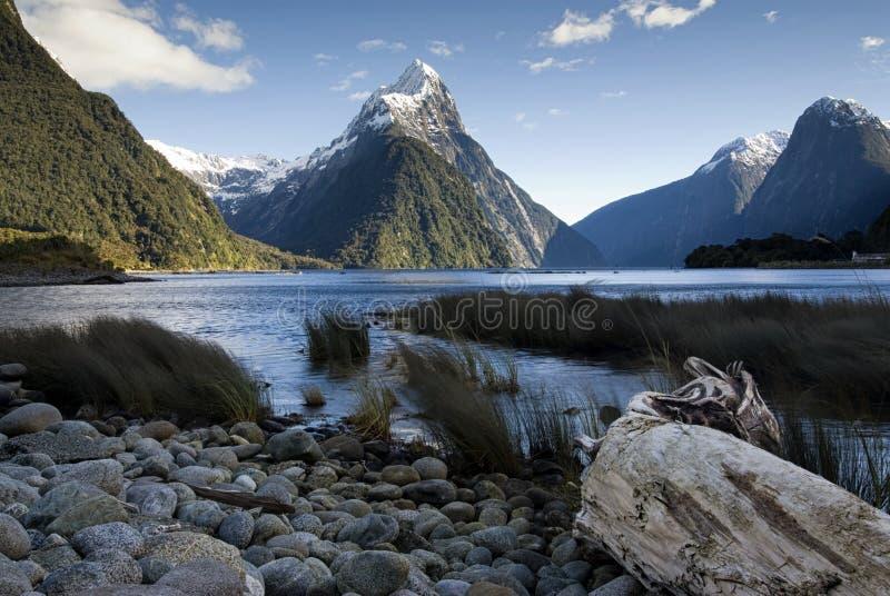 Picco del mitra, Milford Sound, isola del sud, Nuova Zelanda. immagini stock libere da diritti