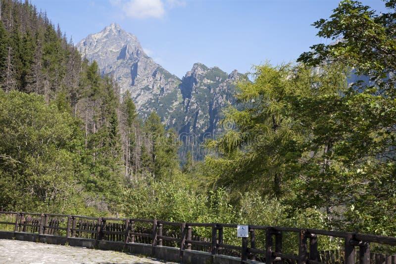 Picco dell'alto hrot di Prostredny - di Tatras immagine stock libera da diritti