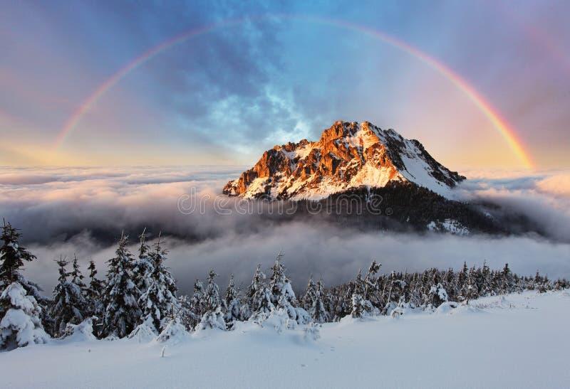 Picco di montagna all'inverno, montagna Fatra della Slovacchia fotografie stock libere da diritti
