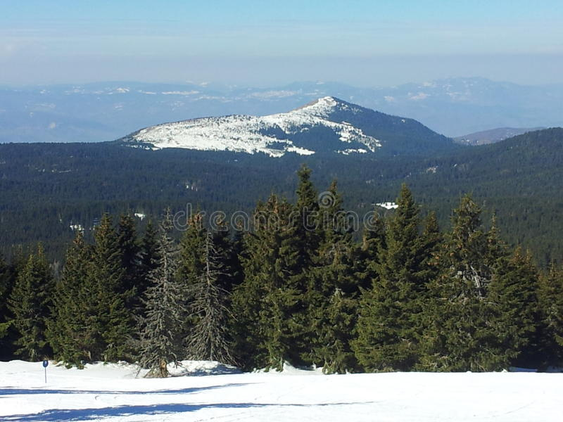 Picco di montagna in Kopaonik fotografie stock libere da diritti