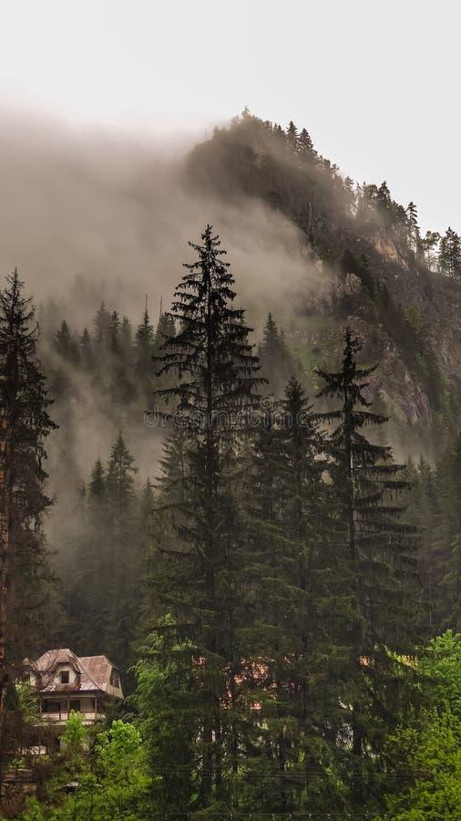 Picco di Suhardul Mic coperto in nebbia Cheile Bicazului - parco nazionale di Hasmasu, montagne di Hasmas, Carpathians orientali, immagini stock libere da diritti