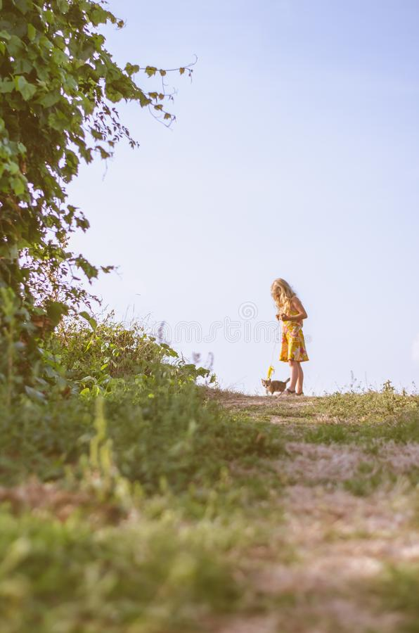 Piccola bambina che cammina con un gatto in piombo fotografie stock libere da diritti