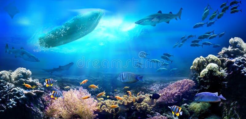Piccola barca nell'oceano fotografia stock libera da diritti