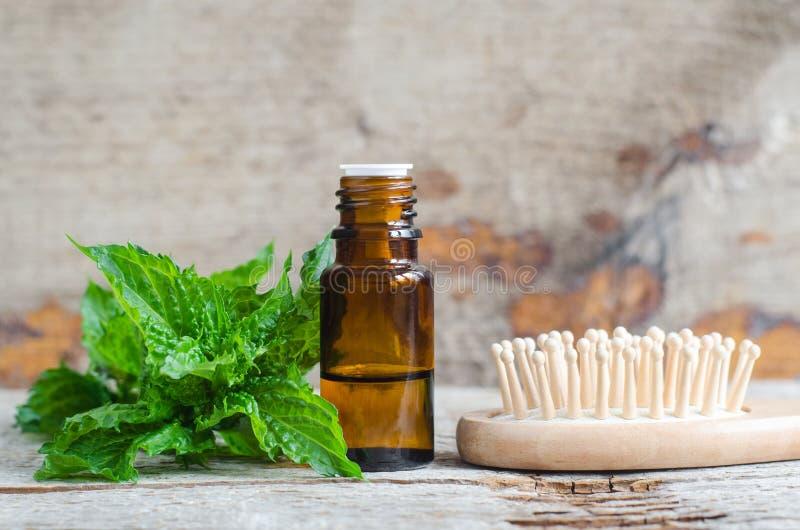 Piccola bottiglia con l'olio essenziale della menta e la spazzola per capelli di legno sui vecchi precedenti di legno La menta ve immagini stock libere da diritti