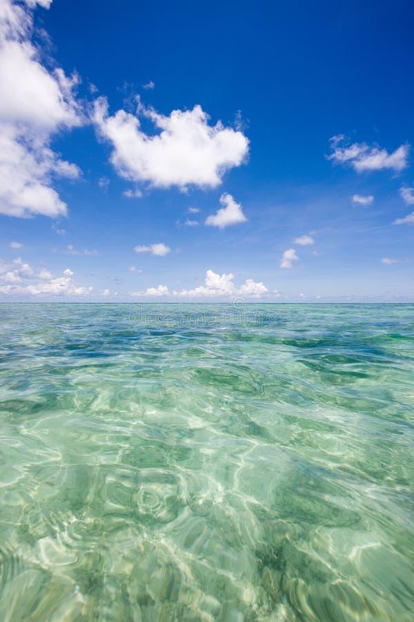 Piccola brezza dell'Oceano Indiano fotografia stock